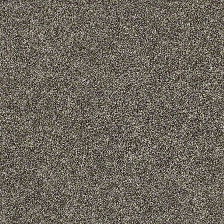 Shaw Shake It Up (T) E9698 Hammerhead Classicbac Carpet
