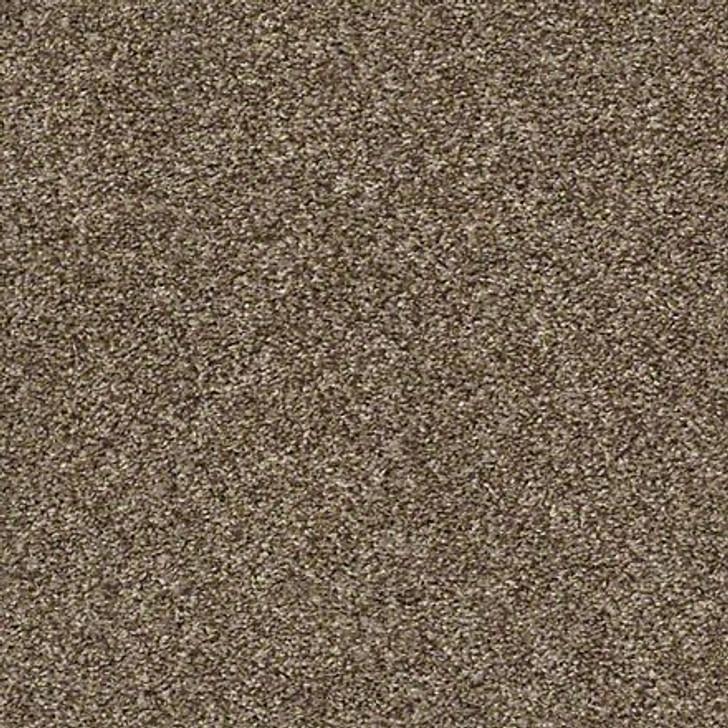 Shaw Shake It Up (T) E9698 Rodeo Classicbac Carpet