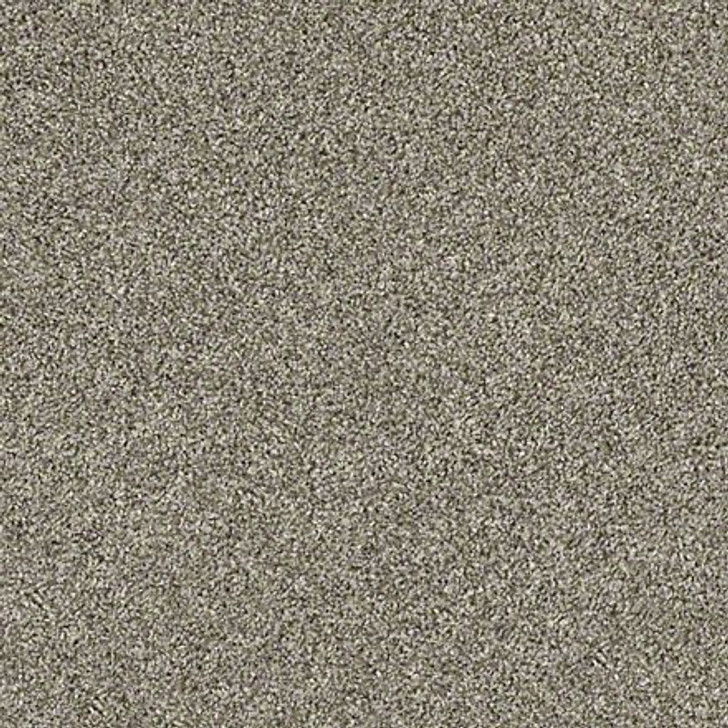 Shaw Shake It Up (T) E9698 Barely There Classicbac Carpet
