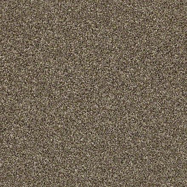 Shaw Shake It Up (T) E9698 Roasted Coffee Classicbac Carpet