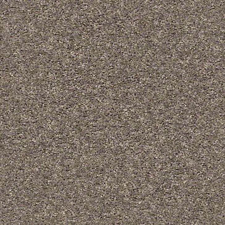 Shaw Shake It Up (S) E9699 Mountain Top Classicbac Carpet