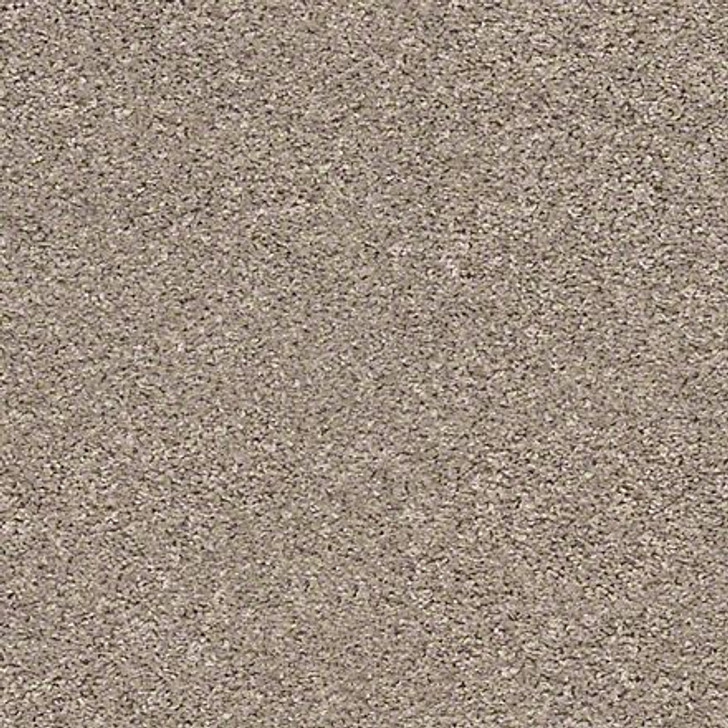 Shaw Shake It Up (S) E9699 Forever Pewter Classicbac Carpet
