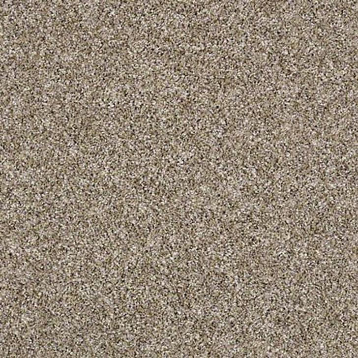 Shaw Shake It Up (A) E9446 Weathered Classicbac Carpet
