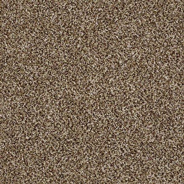 Shaw Shake It Up (A) E9446 Bits of Brown Classicbac Carpet