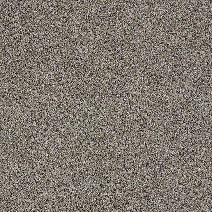 Shaw Shake It Up (A) E9446 Burnt Ash Classicbac Carpet