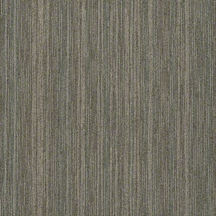Shaw Philadelphia Intellect 54845 Commercial Carpet Tile