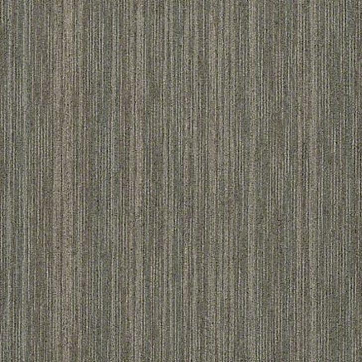 Shaw Philadelphia Intellect 54845 Commercial Carpet Tile