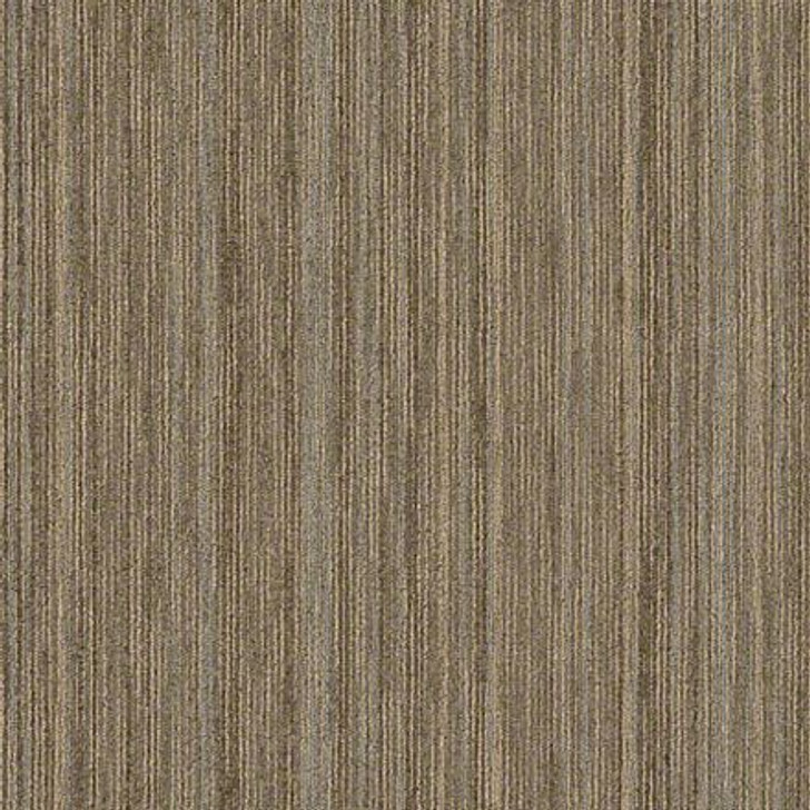 "Shaw Intellect 54845 Scholarly Commercial 24""x24"" Carpet Tile"
