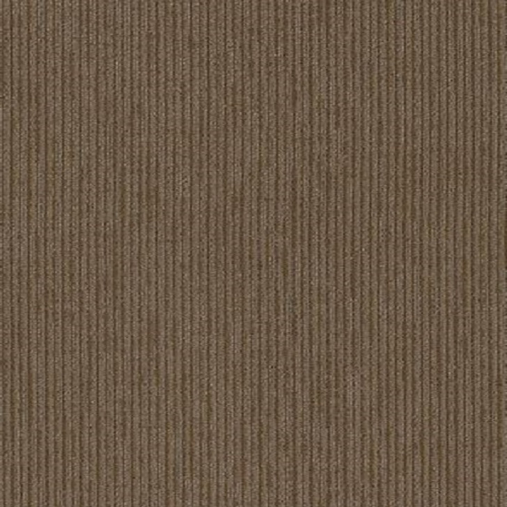 Shaw Philadelphia Commercial All Business Fact Classicbac Carpet