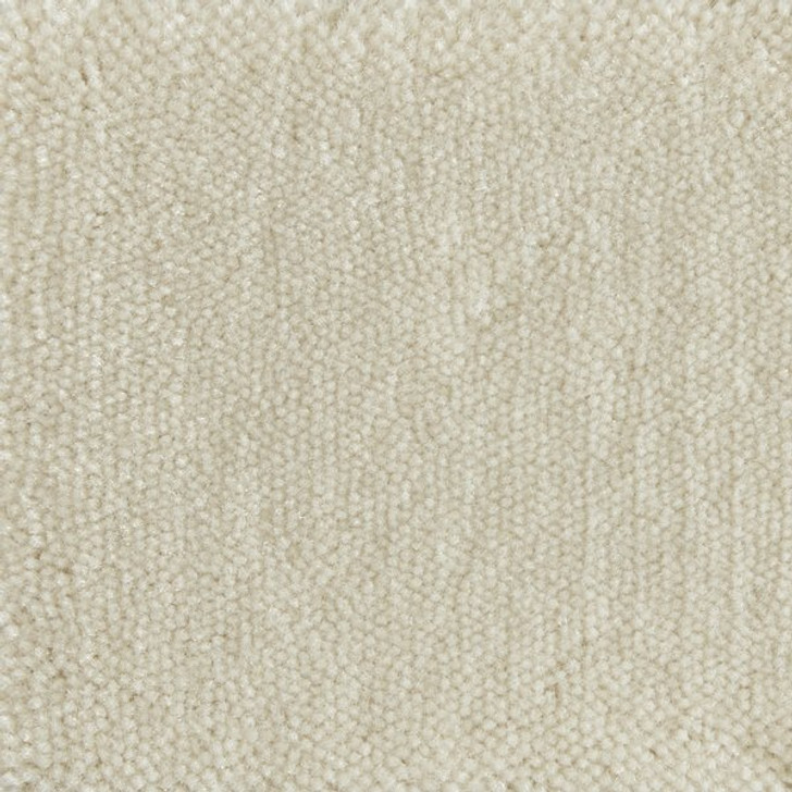 Stanton Atelier Marquee Serenade Nylon Fiber Residential Carpet