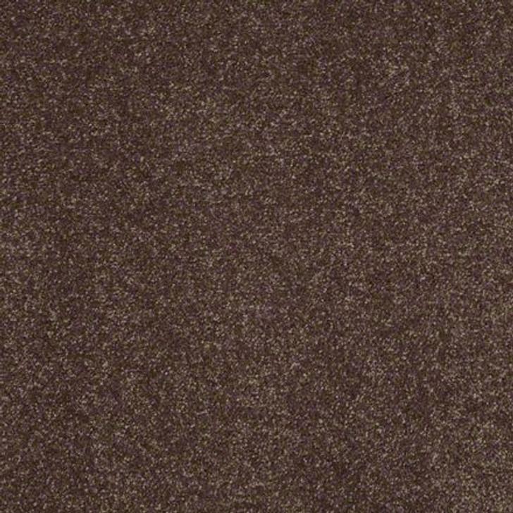 Shaw Secret Escape II 15 E0051 Cup Of Java Clear Touch Carpet