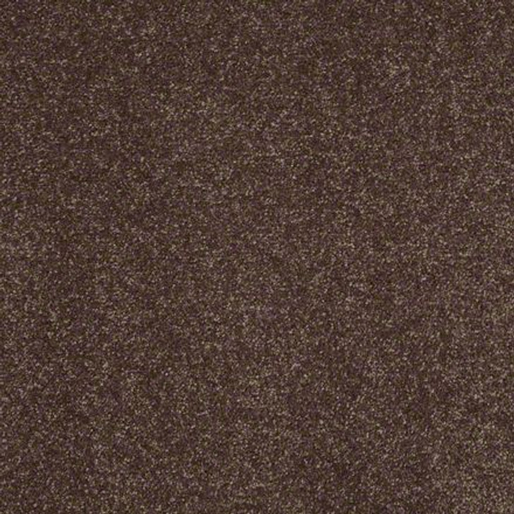 Shaw Secret Escape II 15 E0051 Cup Of Java Clear Touch Carpet