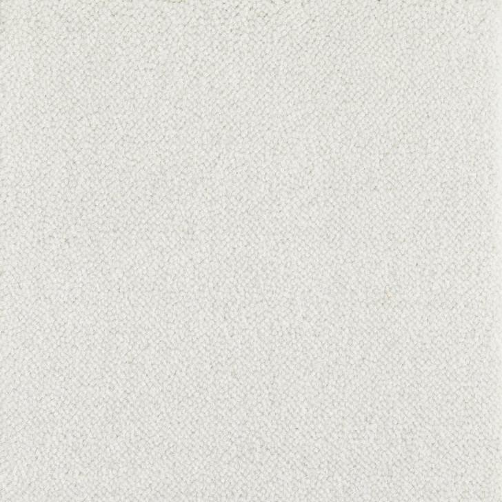 Stanton Atelier Marquee Sonnet Nylon Fiber Residential Carpet
