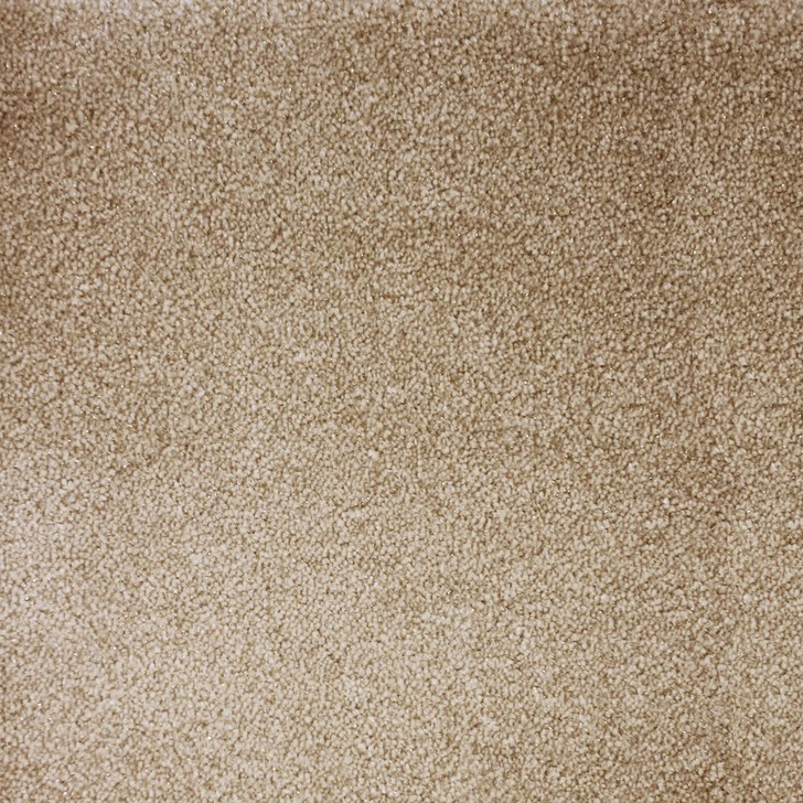 Stanton Atelier Marquee Starry Night Nylon Blend Residential Carpet