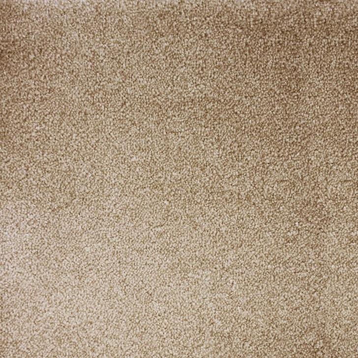 Stanton Atelier Marquee Starry Night Nylon Blend Residential Carpet