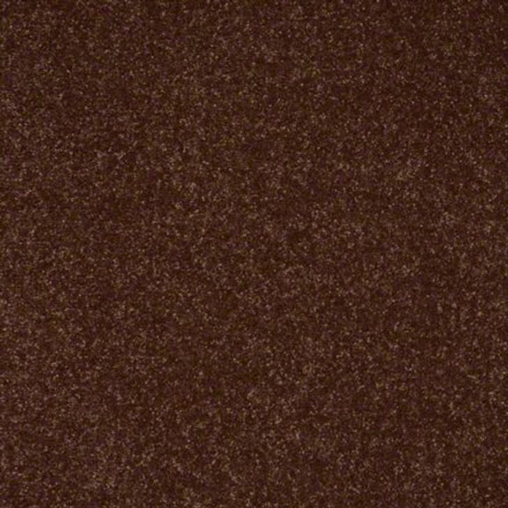 Shaw Secret Escape III 12 E0052 Raisin Clear Touch Carpet