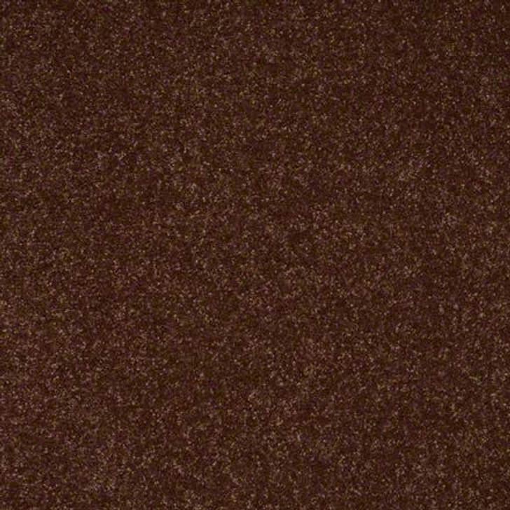 Shaw Secret Escape II 12 E0050 Raisin Clear Touch Carpet