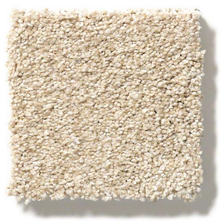 Find Your Comfort Tonal Texture EA818 Sun Kissed (t) Anso Softbac Carpet