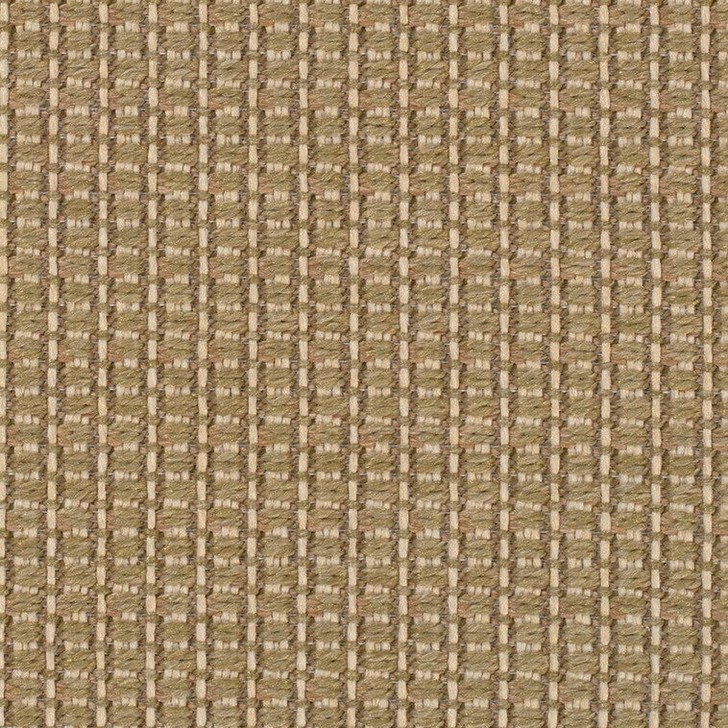 Stanton Anywhere Collection Sakura Lemongrass Polypropylene Fiber Residential Carpet