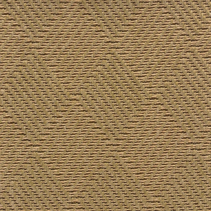 Stanton Anywhere Collection Trade Winds Seagrass Polypropylene Fiber Residential Carpet