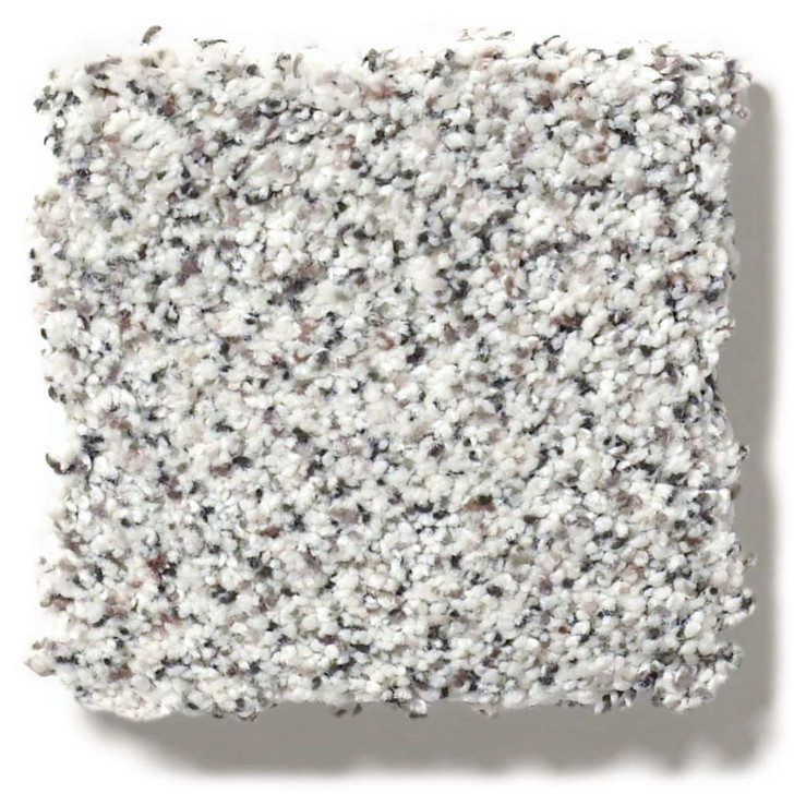 Shaw Colorwall Find Your Comfort II Accent EA821 Residential Carpet