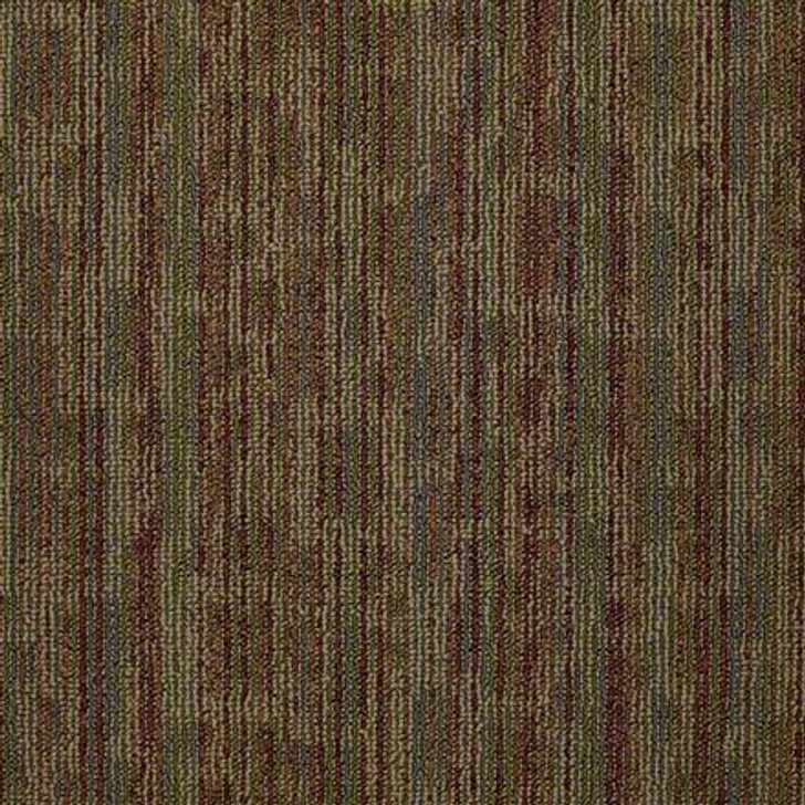 "Hook Up 54491 Shaw Philadelphia Juice Startled 24 X 24"" Carpet Tile"