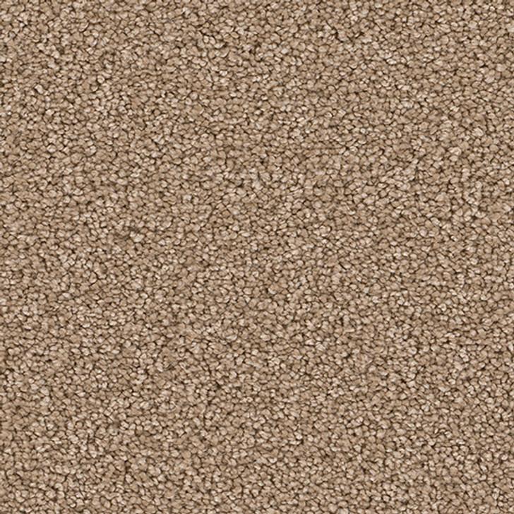 Soft Harmony II 5K750 Textured Harvest PureColor Carpet