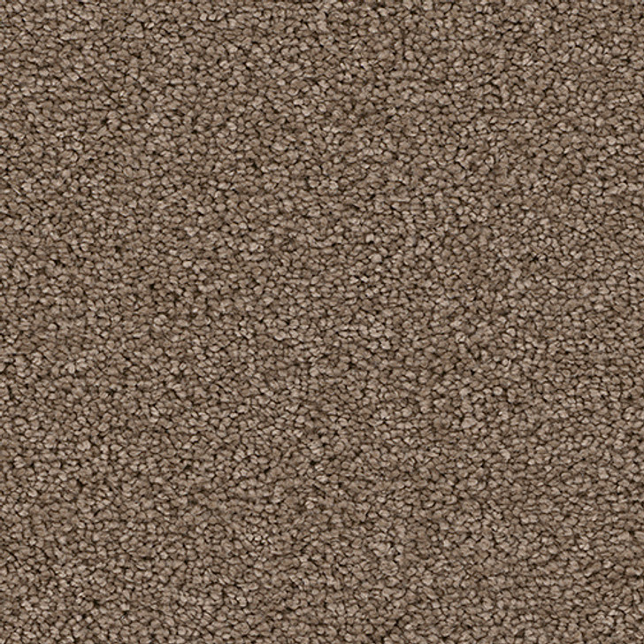 Soft Harmony III 5K760 Textured Bistro PureColor Carpet