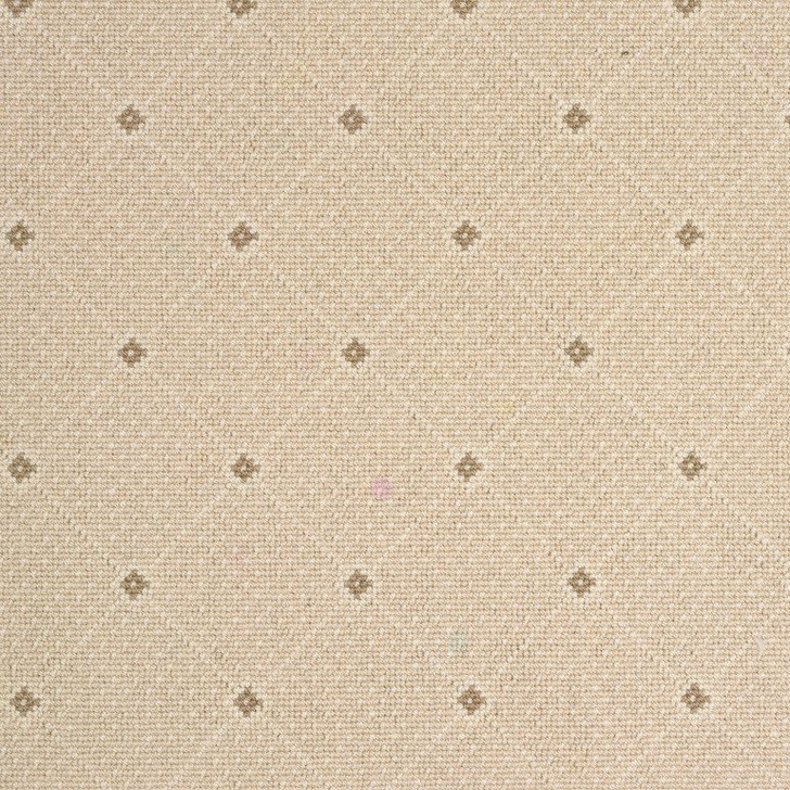 Stanton Wiltrex Andromeda Wool Blend Residential Carpet