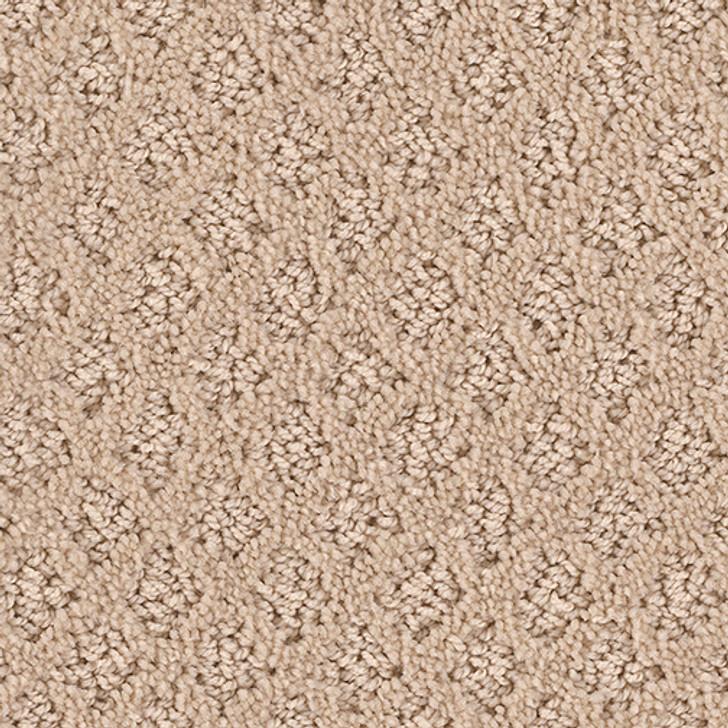 Fashion Appeal 7PD12 Georgia Carpet Shimmer Cut & Loop Carpet