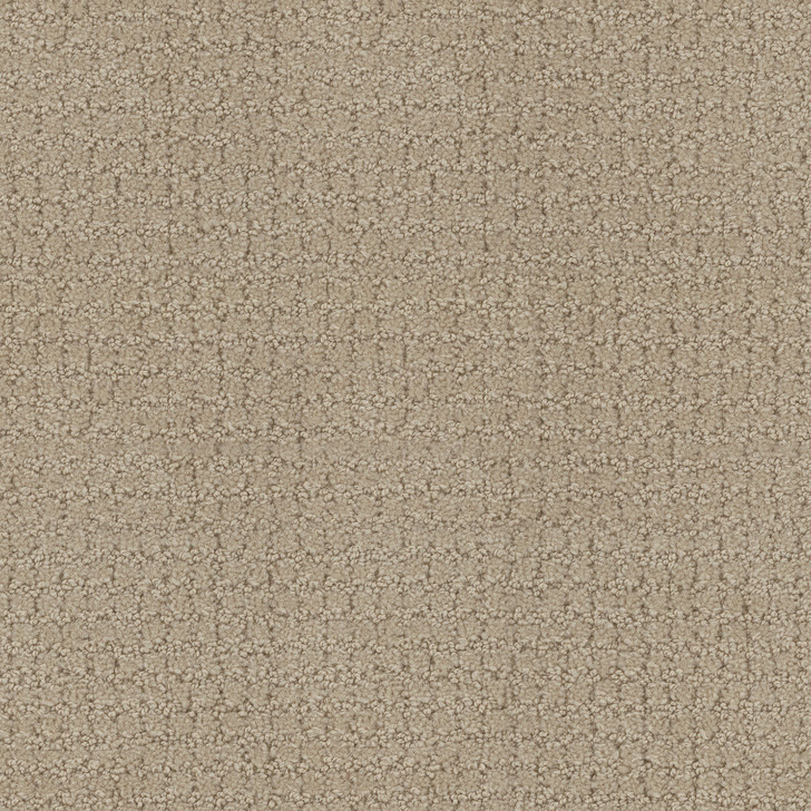 Portico 6PRC Satin Tip-Sheared Loop  Bolyu Broadloam Commercial Carpet