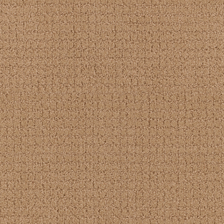 Portico 6PRC Fawn Tip-Sheared Loop  Bolyu Broadloam Commercial Carpet