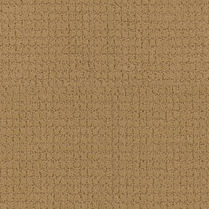 Portico 6PRC Bisque Tip-Sheared Loop  Bolyu Broadloam Commercial Carpet
