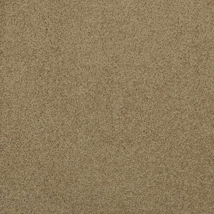 Veranda 6VRD Parchment VRD01 Textured Bolyu Commercial Carpet
