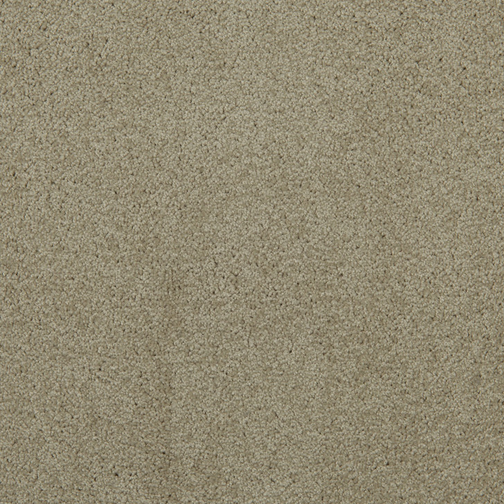 Veranda 6VRD Satin VRD02 Textured Bolyu Commercial Carpet