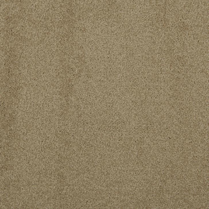 Veranda 6VRD Mushroom VRD04 Textured Bolyu Commercial Carpet