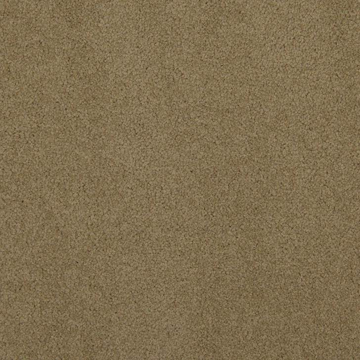 Veranda 6VRD Bisque VRD06 Textured Bolyu Commercial Carpet