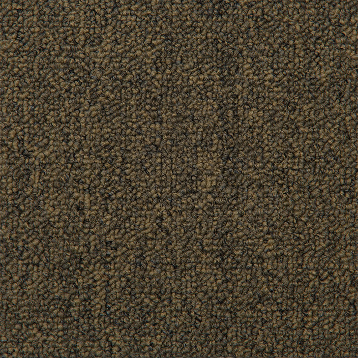 Absolute ABS Hint of Gold Bolyu Broadloom Commercial Carpet