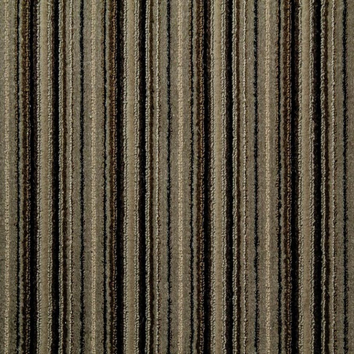 Sh285 Commercial Carpet in Almond @ GA Carpet