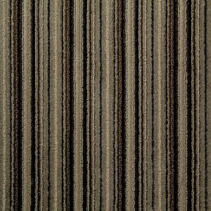 Sh285 Commercial Carpet in Almond @ GA Carpet