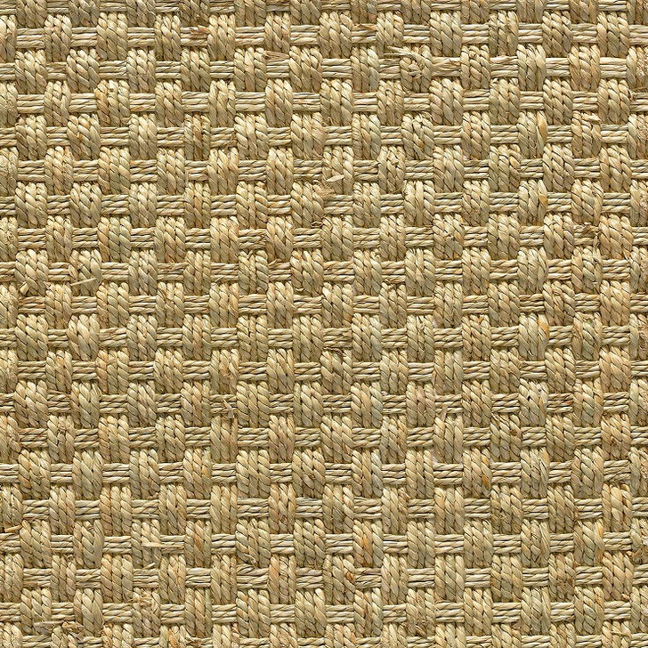 Stanton Sisal Amazon Carpet in Natural Color