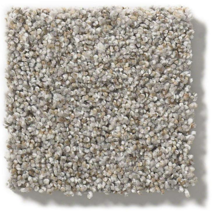 Shaw Foundations  Make It Work Anso Nylon Carpet