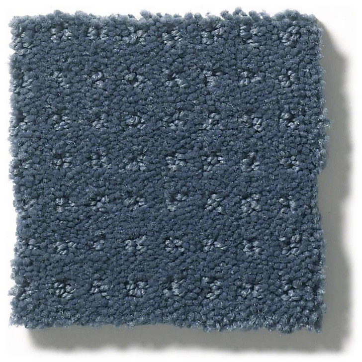 Shaw Foundations Alluring  Disposition Anso Nylon Carpet