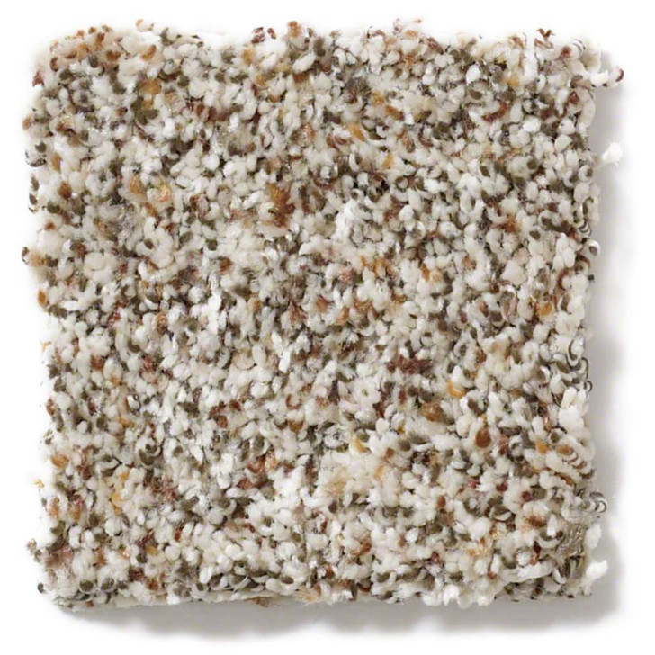 Shaw Simply Yours Treat Me (B) E0681 Residential Carpet