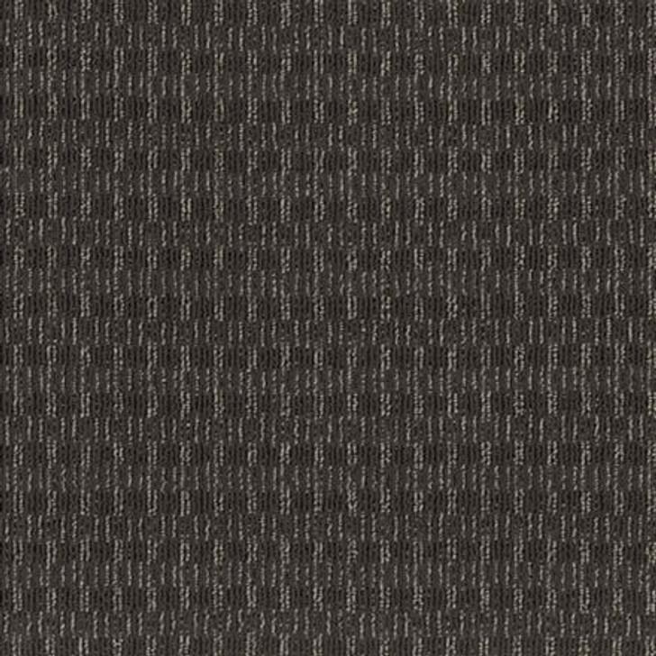 Shaw Philadelphia Be Real Commercial Carpet