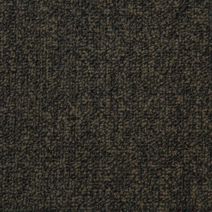Engineered Flooring Contract Absolute Commercial Broadloom Carpet