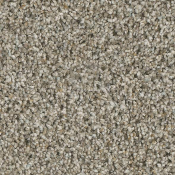 Phenix Accolades FE103 Residential Carpet