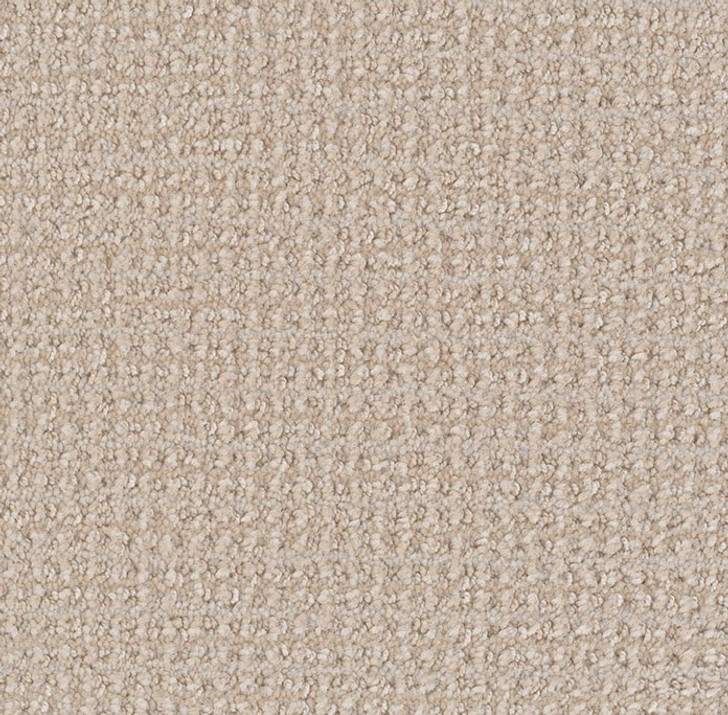 Dream Weaver Lexington Residential Carpet
