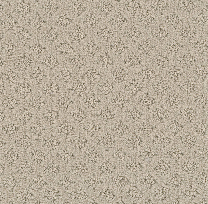 Dream Weaver Millstone 9253 Residential Carpet