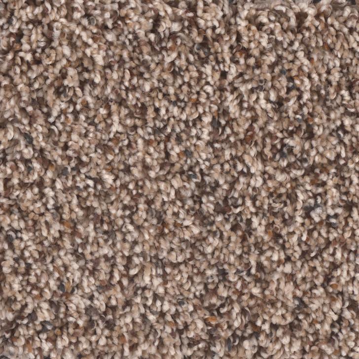 Phenix Stoneybrook II N257 Residential Carpet